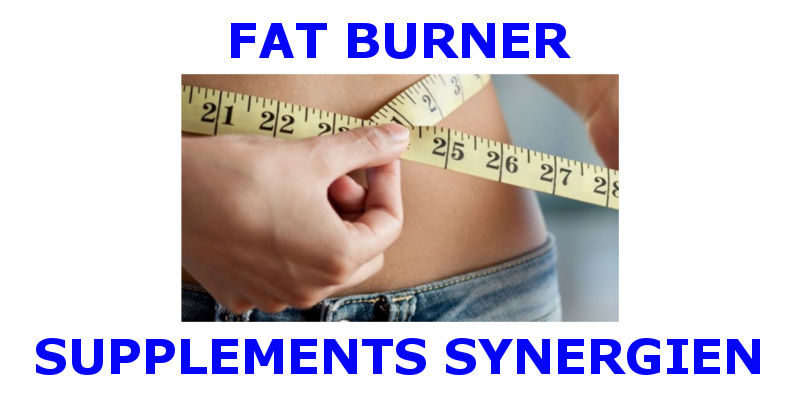 Fat Burner Supplements Synergien